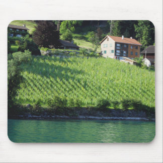 Grapvines Mouse Pad