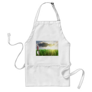 Grass and trowel on a sky and sunshine background standard apron