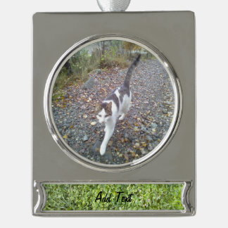 Grass Silver Plated Banner Ornament