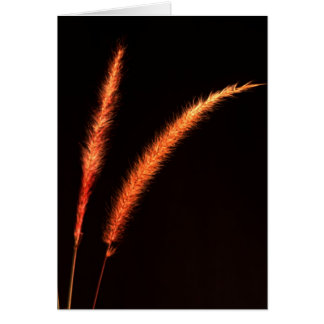 Grass Blades Greeting Card