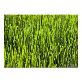 Grass blades personalized invites