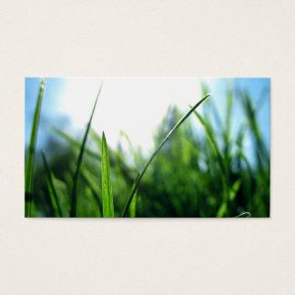 grass & blue sky business card