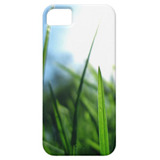 grass & blue sky iPhone 5 cases