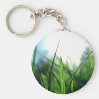 grass & blue sky key ring