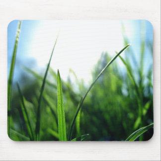 Grass & blue sky mouse mat