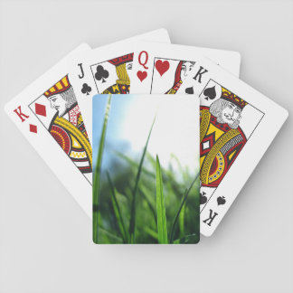 Grass & blue sky playing cards
