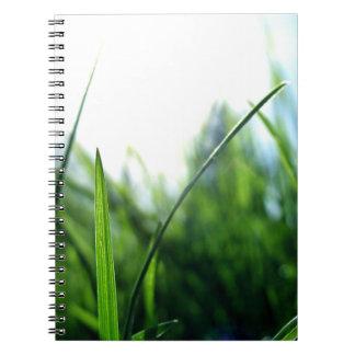 Grass & blue sky spiral notebook