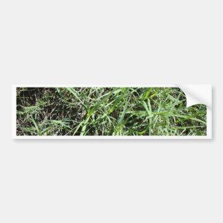 Grass Bumper Sticker