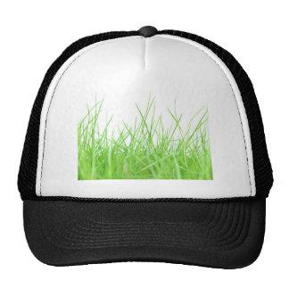 Grass Cap