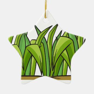 Grass Ceramic Star Decoration
