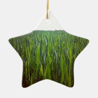 Grass Ornament