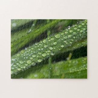 Grass Dew Jigsaw Puzzle