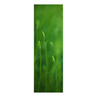 Grass - Green Grasses Background Template Business Card
