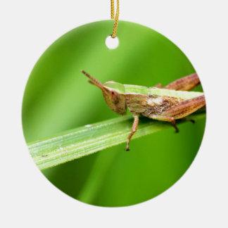 Grass Hopper on Leaf Christmas Ornament