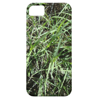 Grass iPhone 5 Covers