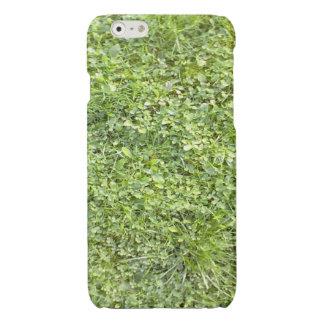 Grass iPhone 6 Plus Case