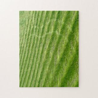Grass Jigsaw Puzzle