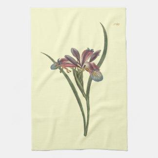 Grass Leaved Flag Iris Illustration Tea Towel
