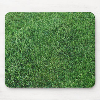 Grass pad mouse mat