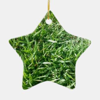 Grass Photo Design Ceramic Star Decoration