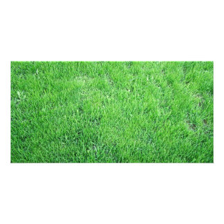 Grass Photo Greeting Card