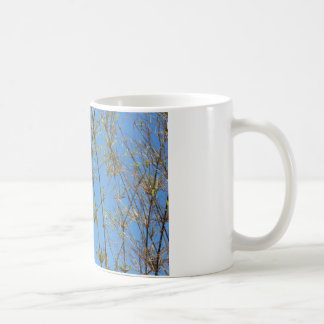 Grass photo on blue background coffee mug