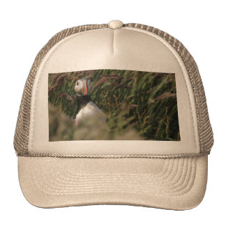 Grass Puffin Hat