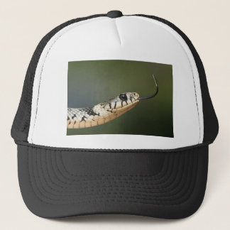 Grass Snake Trucker Hat