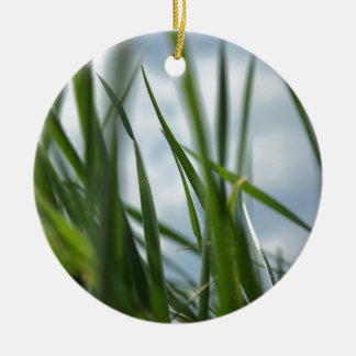 Grass world christmas tree ornament