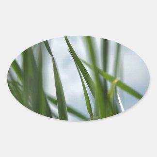 Grass world oval sticker