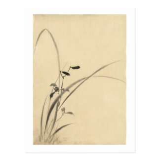 Grasses Hokusai 葛飾北斎 Postcard