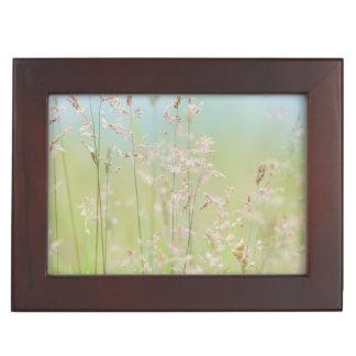 Grasses in motion keepsake box