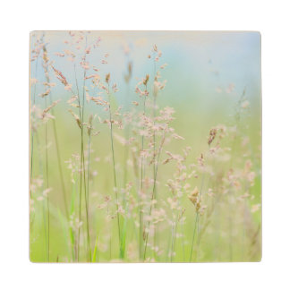 Grasses in motion wood coaster