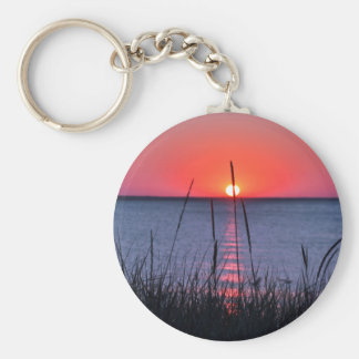 Grasses in the evening light - island reproaches basic round button key ring