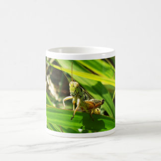 Grasshopper 1383 basic white mug
