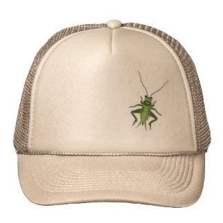 Grasshopper hat