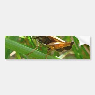 Grasshopper on Blade of Grass Bumper Stickers