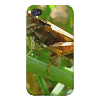 Grasshopper on Blade of Grass iPhone 4 Covers