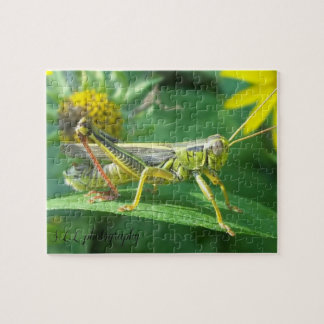 Grasshopper Photography Puzzle w/gift box