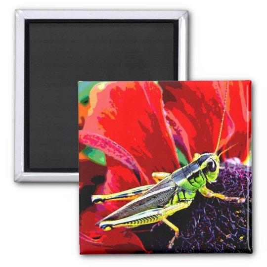 Grasshopper Square Magnet