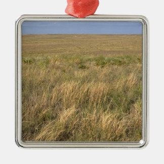 Grassland prairie east of Sidney, Nebraska. Christmas Ornament