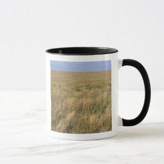 Grassland prairie east of Sidney, Nebraska. Mug