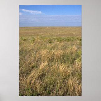 Grassland prairie east of Sidney, Nebraska. Poster