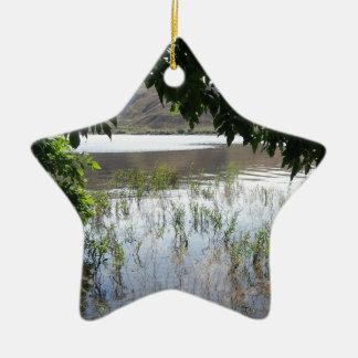 Grassy Lake with Tree Branch Ceramic Star Decoration