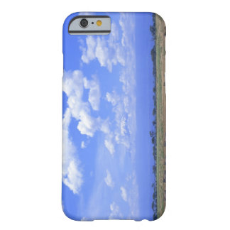 Grassy Plain Barely There iPhone 6 Case