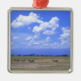 Grassy Plain Silver-Colored Square Decoration