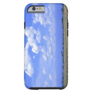 Grassy Plain Tough iPhone 6 Case