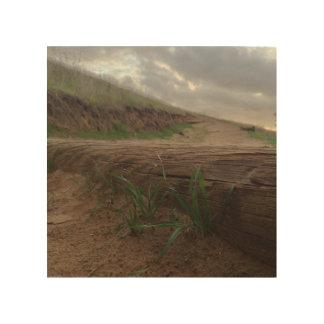 Grassy Steps Wood Print