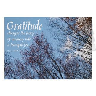 Gratitude Bonhoeffer Quote sobercards.com Greeting Card
