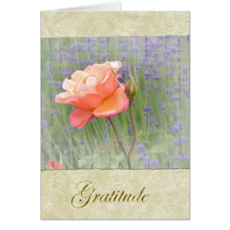 Gratitude Rose with Lavender Greeting Card